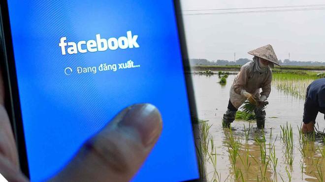 Việt Nam là cỗ máy doanh thu lớn nhất Đông Nam Á của Facebook - Ảnh 1.