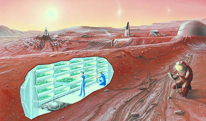 Con người có thể sinh sản trên sao Hỏa vì tinh trùng có thể tồn tại trên đó tới 200 năm - Ảnh 2.