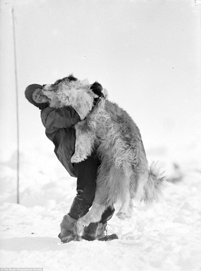 Cuộc phiêu lưu ở Nam Cực của một chú mèo mang tên Chippy - Ảnh 1.