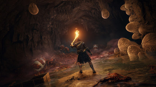 Hidetaka Miyazaki hé lộ thêm chi tiết về Elden Ring: không nhất thiết phải đánh boss để phá đảo, game vừa khó hơn, lại vừa dễ hơn trước - Ảnh 3.