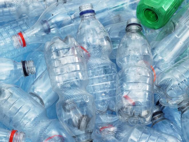 Dùng khuẩn E. coli, các nhà khoa học tái chế chai nhựa thành vani làm kem - Ảnh 1.