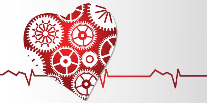 Dù cơ thể bạn thừa hay thiếu cân, màng mỡ bọc tim quá dày sẽ luôn tổn hại tới sức khỏe. Đây là cách giúp bạn cải thiện sức khỏe tim mạch - Ảnh 5.