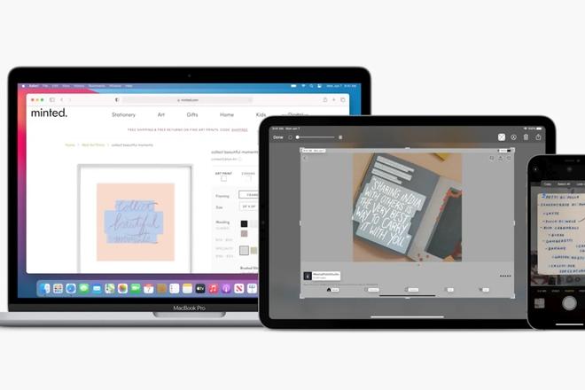 Apple Live Text có thể đọc được tất cả văn bản trong tất cả ảnh của bạn bằng AI - Ảnh 3.