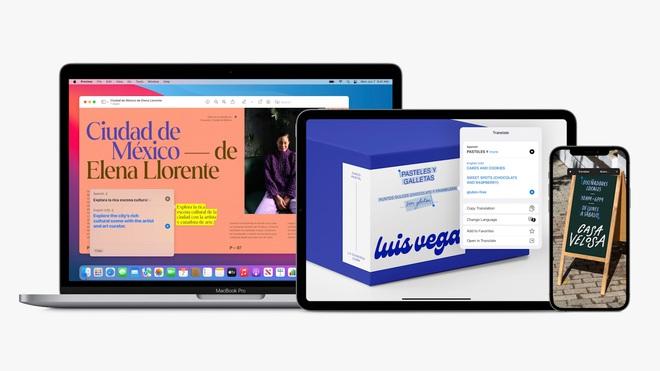 iPadOS 15 chính thức: Thiết kế widget linh hoạt, đa nhiệm tốt hơn - Ảnh 7.