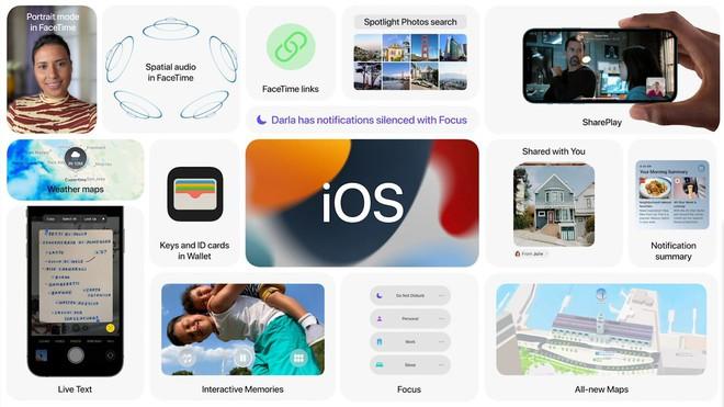 Hướng dẫn cài đặt iOS 15 và iPadOS 15 public beta cho tất cả người dùng - Ảnh 2.