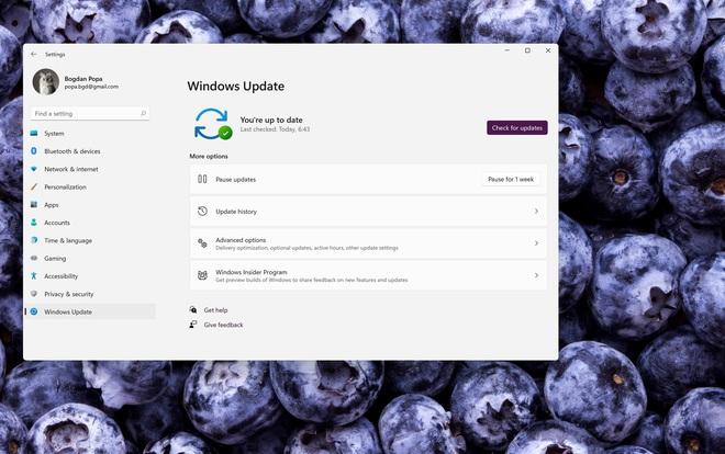 Microsoft sẽ không bắt buộc người dùng update lên Windows 11 - Ảnh 1.