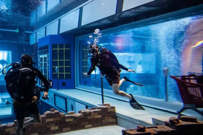 Sử dụng 14 triệu lít nước, Dubai đã xây dựng được hồ bơi sâu nhất thế giới và tái hiện lại lục địa Atlantis đã mất - Ảnh 6.