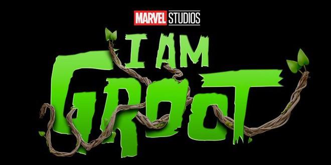 Tất cả 13 chương trình truyền hình Marvel phát hành sau Loki - Ảnh 8.