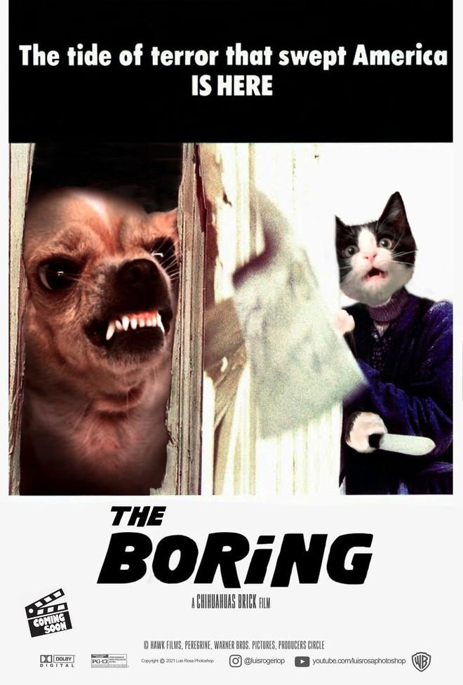 [Chùm ảnh vui] Sẽ thế nào nếu các boss chó mèo thay con người thủ vai chính trong những bộ phim đình đám thế giới? - Ảnh 13.