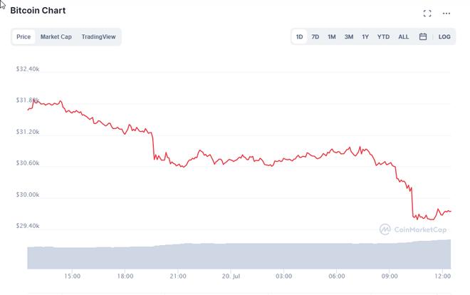Nhà đầu tư hoảng loạn khi Bitcoin thủng mốc 30.000 USD, sẽ còn lao dốc sâu về 22.000 USD? - Ảnh 1.