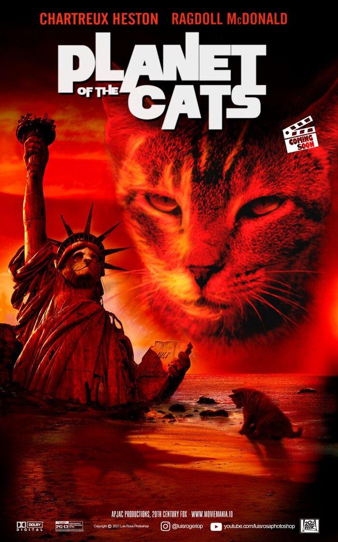 [Chùm ảnh vui] Sẽ thế nào nếu các boss chó mèo thay con người thủ vai chính trong những bộ phim đình đám thế giới? - Ảnh 3.