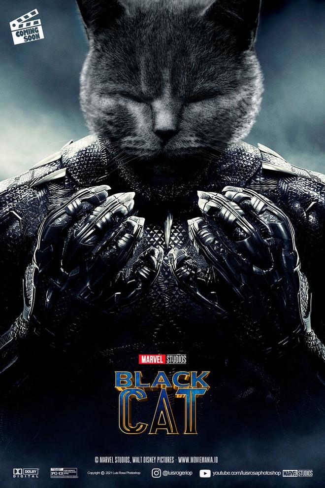 [Chùm ảnh vui] Sẽ thế nào nếu các boss chó mèo thay con người thủ vai chính trong những bộ phim đình đám thế giới? - Ảnh 5.
