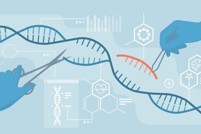 Công nghệ sửa đổi gene CRISPR có thể ngưng sự lan truyền của virus corona giữa các tế bào trên người - Ảnh 1.
