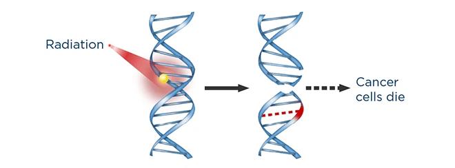 Xạ trị bằng hiệu ứng lượng tử giúp tiêu diệt tế bào ung thư chỉ trong 3 ngày - Ảnh 2.