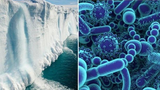 Các nhà khoa học rã băng vĩnh cửu ở Tây Tạng, tìm thấy 28 chủng virus cổ đại chưa từng được biết đến - Ảnh 5.