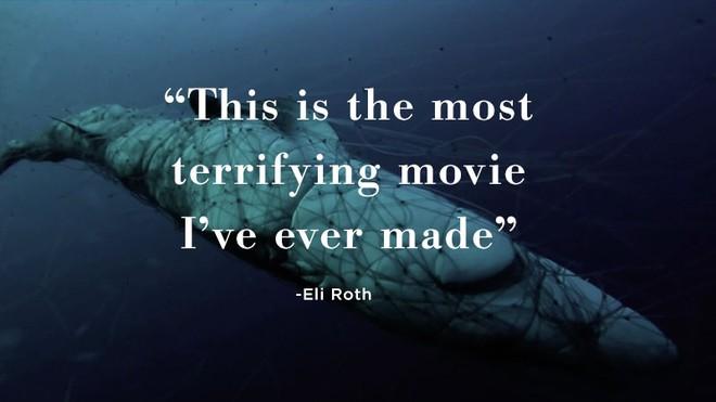 Kẻ săn mồi trở thành con mồi: Hàng trăm triệu con cá mập đối mặt với các chuyến đi săn đẫm máu của con người mỗi năm - Ảnh 8.