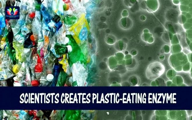 Nhựa biến thành bột ăn được? Các nhà khoa học làm được! - Ảnh 3.