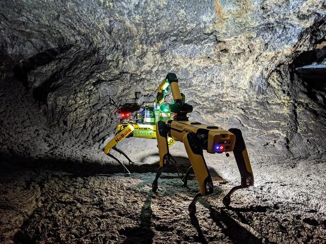 NASA huấn luyện chó robot để hỗ trợ con người khám phá hang động trên sao Hỏa - Ảnh 1.