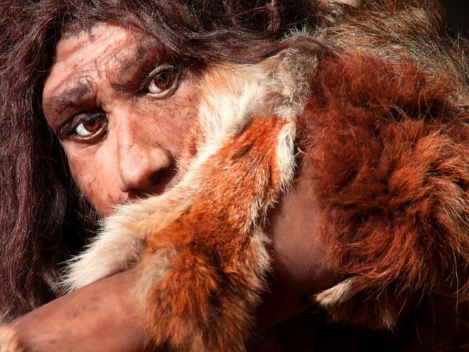 Các nhà nghiên cứu đã giải mã nhóm máu của người cổ Neanderthal và Denisovan - Ảnh 4.