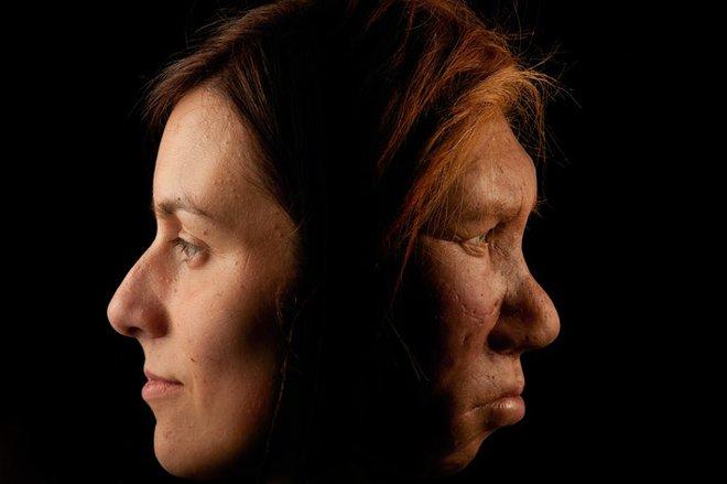 Nghiên cứu DNA chỉ ra rằng, chỉ ít hơn 2% trong gen con người thực sự là con người - Ảnh 5.