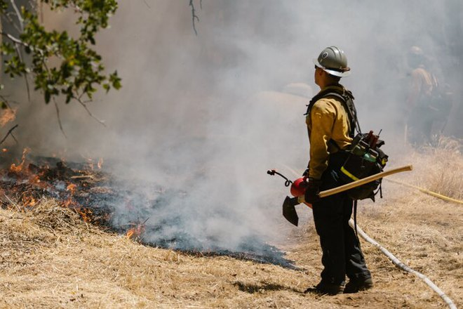 Khói cháy rừng khiến con người dễ nhiễm COVID-19 hơn nhưng chúng ta lại không thể trốn chạy khỏi chúng - Ảnh 1.