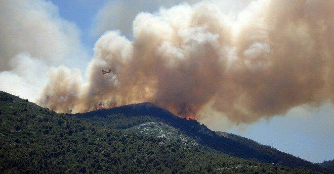 Khói cháy rừng khiến con người dễ nhiễm COVID-19 hơn nhưng chúng ta lại không thể trốn chạy khỏi chúng - Ảnh 3.