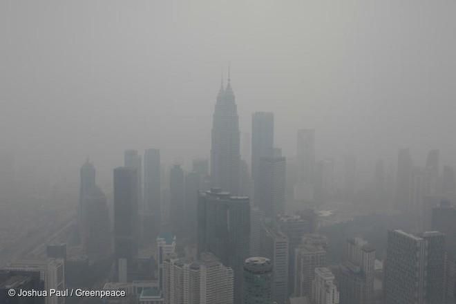 Khói cháy rừng khiến con người dễ nhiễm COVID-19 hơn nhưng chúng ta lại không thể trốn chạy khỏi chúng - Ảnh 4.