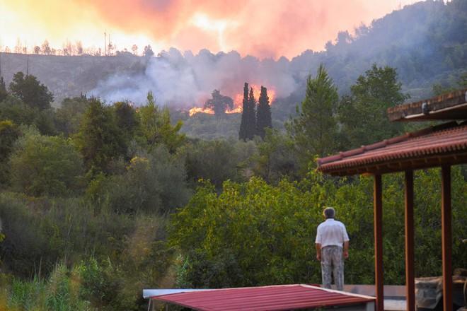 Khói cháy rừng khiến con người dễ nhiễm COVID-19 hơn nhưng chúng ta lại không thể trốn chạy khỏi chúng - Ảnh 6.