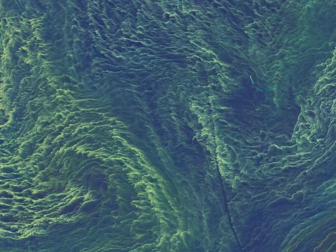 Nghiên cứu mới: Tốc độ quay của Trái Đất ảnh hưởng trực tiếp tới việc xuất hiện sự sống - Ảnh 4.