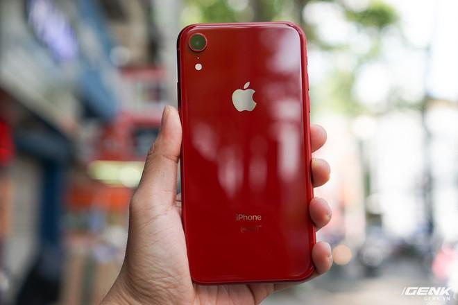 Tại sao đến giờ Apple vẫn bán iPhone XR với giá 499 USD? - Ảnh 2.
