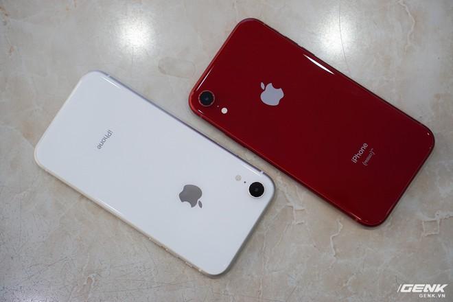 Tại sao đến giờ Apple vẫn bán iPhone XR với giá 499 USD? - Ảnh 4.