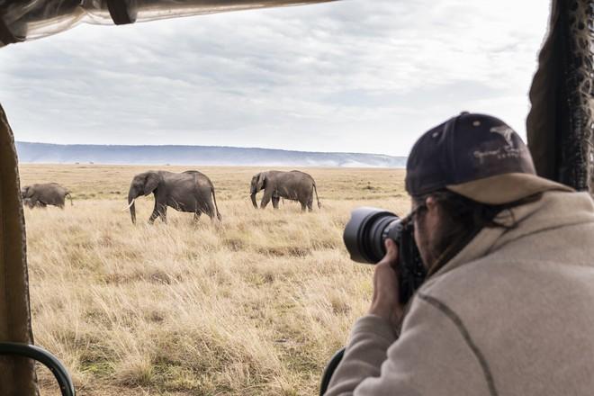 Tận dụng thời gian mắc kẹt ở Kenya do đại dịch, nhiếp ảnh gia tạo ra album ảnh động vật hoang dã ấn tượng - Ảnh 1.