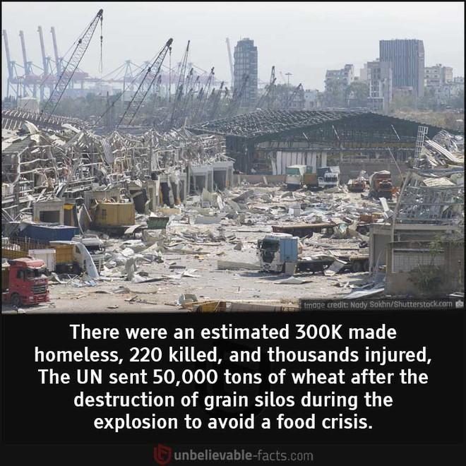 Những sự thật bất ngờ về Vụ nổ Beirut - Ảnh 6.