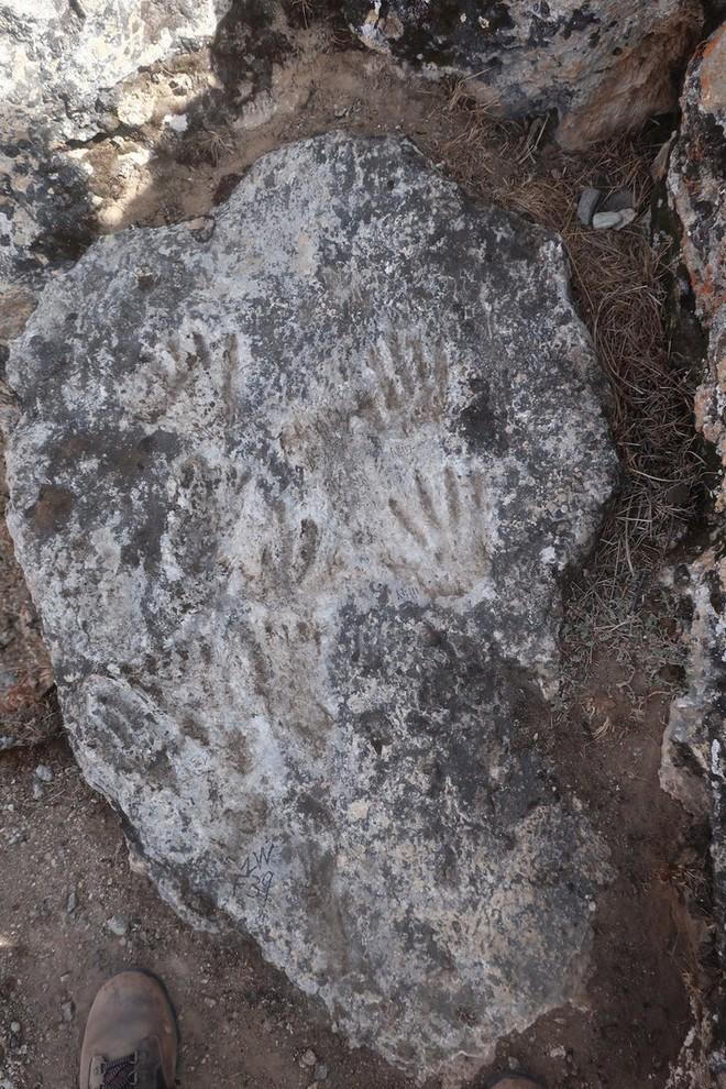 Nhóm khảo cổ tìm thấy tác phẩm nghệ thuật cổ xưa nhất lịch sử loài người, với tác giả là một nhóm trẻ nghịch bùn - Ảnh 1.