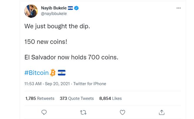 Giá Bitcoin lao dốc, tổng thống một quốc gia lập tức bỏ ra hơn 155 tỷ đồng để bắt đáy - Ảnh 1.