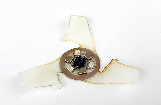 Đây chính là vi mạch bay nhỏ nhất được con người chế tạo ra, chỉ to hơn một hạt cát - Ảnh 4.
