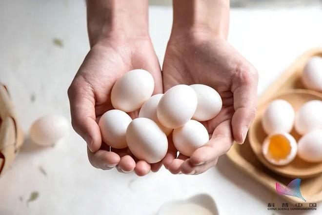 So sánh hàm lượng dinh dưỡng của trứng gà, trứng vịt, trứng cút... loại nào bổ dưỡng nhất? - Ảnh 4.