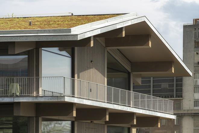 Biến đổi khí hậu khiến mực nước dâng cao, Hà Lan xây dựng luôn văn phòng nổi lớn nhất thế giới để đối phó - Ảnh 4.