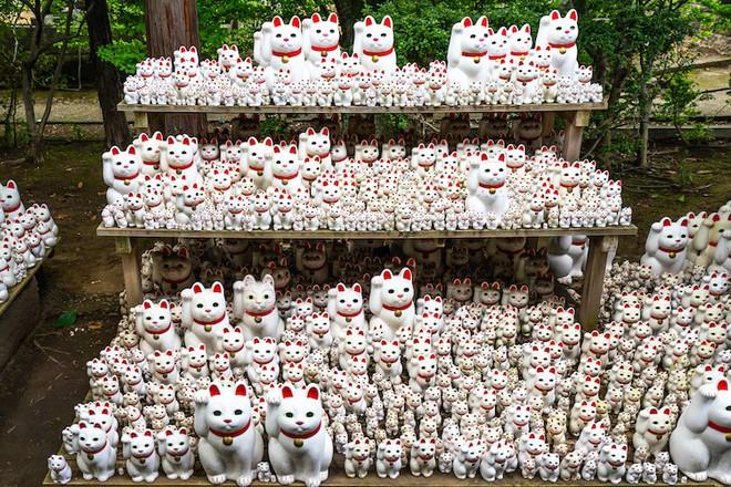 Maneki-Neko là gì? Hãy khám phá nguồn gốc hấp dẫn của chú mèo may mắn đến từ Nhật Bản - Ảnh 9.