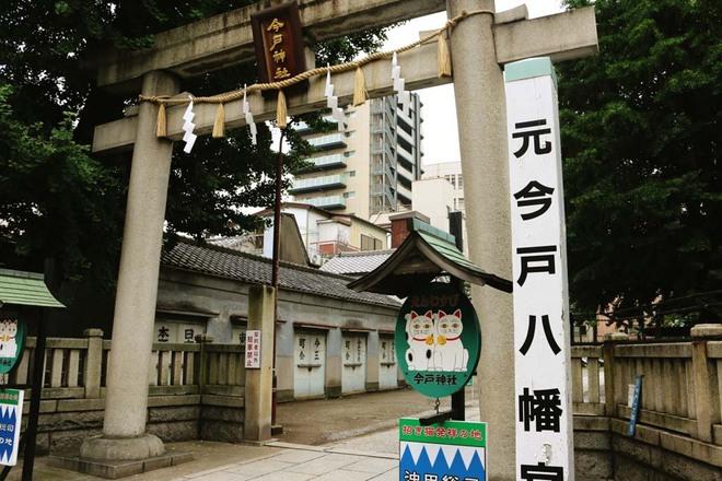 Maneki-Neko là gì? Hãy khám phá nguồn gốc hấp dẫn của chú mèo may mắn đến từ Nhật Bản - Ảnh 4.