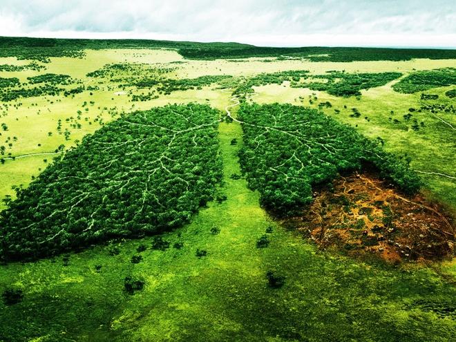 Toàn bộ hành tinh sẽ bị nhấn chìm trong 6 mét nước vĩnh viễn nếu thảm họa này không được ngăn chặn: Đại hồng thủy tương lai? - Ảnh 4.