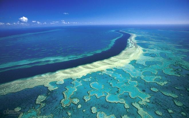 Toàn bộ hành tinh sẽ bị nhấn chìm trong 6 mét nước vĩnh viễn nếu thảm họa này không được ngăn chặn: Đại hồng thủy tương lai? - Ảnh 7.