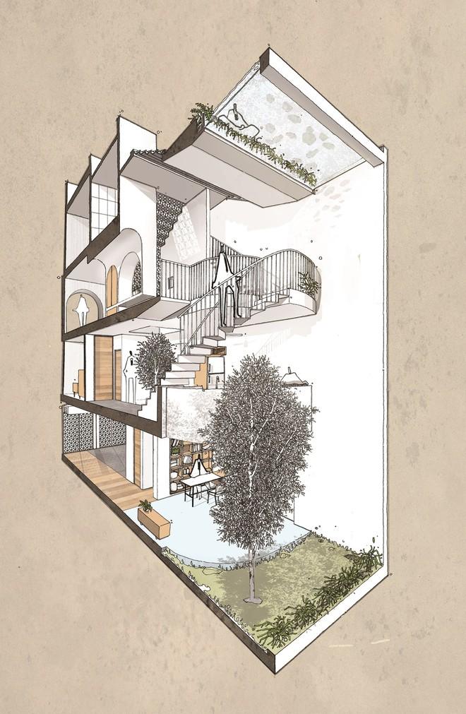 Bản vẽ Concept của Backyard House. Về cơ bản, các khu vực công năng đều được giữ nguyên. Phần thanh cùng vườn và thông tầng được đẩy về cuối nhà, giúp phần không gian ở thứ hai luôn có ảnh sáng, đồng thời ngôi nhà cũng tự động thông gió tốt hơn.