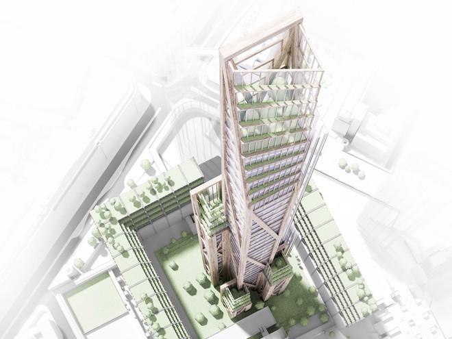 Công ty kiến trúc PLP và Đại học Cambridge đang phối hợp thực hiện dự án xây dựng tòa nhà 80 tầng bằng gỗ.