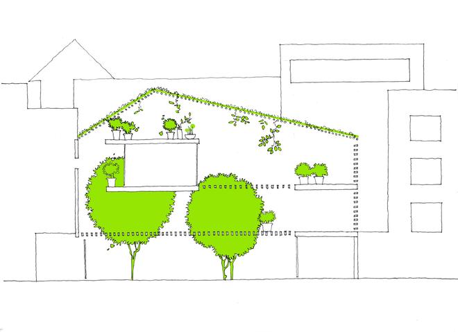 Mặt cắt ý tưởng của a21house. Ngôi nhà - đồng thời là văn phòng làm việc - sẽ có hình khối đơn giản, nhưng không gian bên trong luôn tràn đầy ánh sáng và cây xanh.