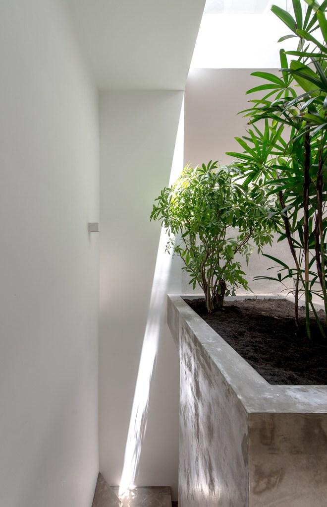 Lõi thang được để ở khoảng cách tối thiểu, các chậu cây bằng bê tông được bố trí xen kẽ lối đi giúp không gian lưu thông chính không bị bí bách và trở lên sinh động hơn.