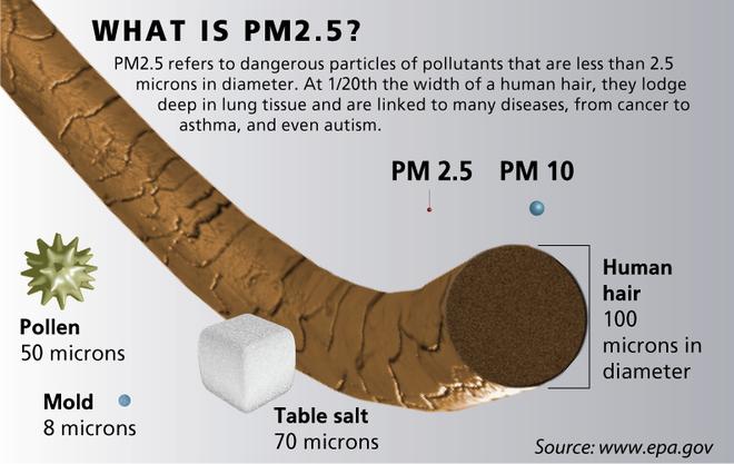 Ảnh phóng to cho thấy kích thuớc của bụi PM10 và PM2,5 nhỏ hơn bề mặt sợi tóc hàng chục lần. Đây là lí do khiến loại bụi này trở nên nguy hiểm, vì có thể lọt qua các loại vải thông thường, đi thẳng vào phổi.
