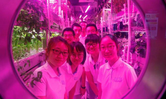 2 nhóm sinh viên tham gia thử nghiệm sống trong môi trường khép kín