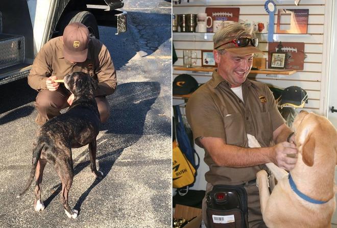 Những hình ảnh trên trang UPS DOGS cho thấy có cả một cộng đồng tài xế và người dùng Facebook thật sự yêu và tôn trọng loài vật 4 chân trung thành của con người