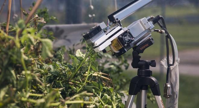 Một máy đo lường hàm lượng dinh dưỡng có trong lá cây